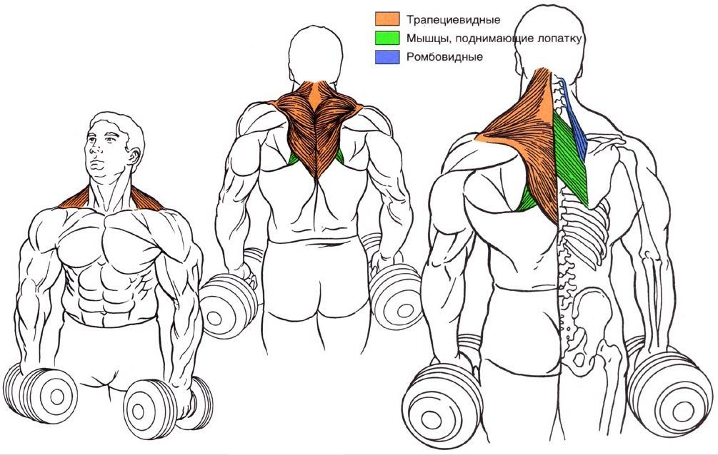 Антикризисная прокачка для ленивых айтишников (2 тренировка) - tiaurus.name 2014 06 12 12 39 37